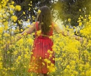 festa-della-donna-2013-mimose_313x262