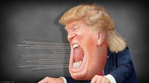 Sanità, Russia e Twitter. Sei mesi di Trump